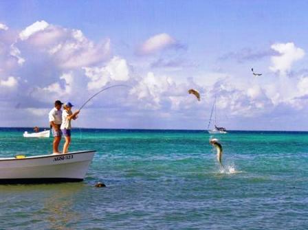 Auf Fischfang vom Boots aus