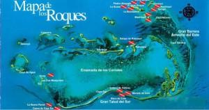 Die besten Tauchspots in Los Roques